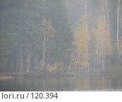 Купить «Осень в пастельной дымке, озеро», фото № 120394, снято 20 октября 2007 г. (c) Иван / Фотобанк Лори