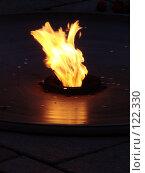 Купить «Вечный огонь», фото № 122330, снято 19 марта 2007 г. (c) Derinat / Фотобанк Лори