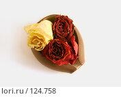 Купить «Розы в ча хе», фото № 124758, снято 22 ноября 2007 г. (c) Екатерина Дындыкина / Фотобанк Лори