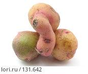 Купить «Весёлая картошка», фото № 131642, снято 8 июля 2007 г. (c) Иван / Фотобанк Лори