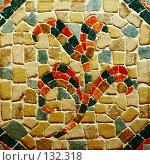 Купить «Каменный цветок», фото № 132318, снято 27 ноября 2007 г. (c) Анатолий Теребенин / Фотобанк Лори