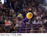 Купить «Микрофон на сцене и зрители. Microphone on the stage and audience», фото № 132346, снято 14 апреля 2007 г. (c) Дмитрий Ощепков / Фотобанк Лори