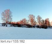 Морозная свежесть. Стоковое фото, фотограф A.Козырева / Фотобанк Лори