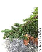 Купить «Еловая ветка в серебристой мишуре с шишками», фото № 139078, снято 30 октября 2007 г. (c) Иван / Фотобанк Лори