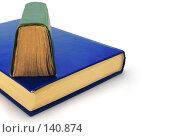 Купить «Книга и книга», фото № 140874, снято 30 ноября 2007 г. (c) Анатолий Теребенин / Фотобанк Лори