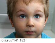 Купить «Мишкин портрет», фото № 141182, снято 29 февраля 2004 г. (c) Морозова Татьяна / Фотобанк Лори