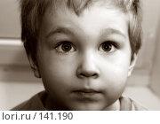 Купить «Портрет мальчика», фото № 141190, снято 29 февраля 2004 г. (c) Морозова Татьяна / Фотобанк Лори