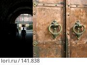 Купить «Медные ворота Донского монастыря. Москва», фото № 141838, снято 5 сентября 2007 г. (c) Юрий Синицын / Фотобанк Лори
