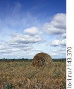 Купить «Копна на фоне синего неба», фото № 143370, снято 2 сентября 2007 г. (c) Антон Перегрузкин / Фотобанк Лори