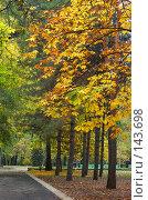 Купить «Дорожка в парке. Осень.», фото № 143698, снято 27 октября 2007 г. (c) Сергей Старуш / Фотобанк Лори