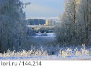 Морозная даль. Стоковое фото, фотограф Герман Филатов / Фотобанк Лори