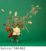 Купить «Физалис,роза и луговые цветы в вазе на зеленом фоне», фото № 144462, снято 11 декабря 2007 г. (c) Коннов Леонид Петрович / Фотобанк Лори