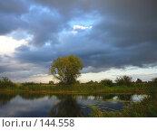 Купить «Осенний пейзаж у озера в непогоду», фото № 144558, снято 16 сентября 2007 г. (c) Михаил Коханчиков / Фотобанк Лори