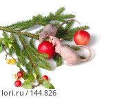 Купить «Крысиный доклад», фото № 144826, снято 23 сентября 2007 г. (c) Иван / Фотобанк Лори