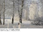 Зимняя сказка. Стоковое фото, фотограф Герман Филатов / Фотобанк Лори