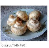 Купить «Грибы шампиньоны на тарелке», фото № 146490, снято 8 декабря 2007 г. (c) Geo Natali / Фотобанк Лори