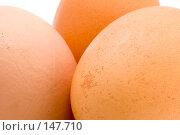Купить «Яйца», фото № 147710, снято 23 октября 2019 г. (c) Угоренков Александр / Фотобанк Лори