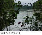 Купить «Раннее утро», фото № 149514, снято 2 августа 2007 г. (c) Макарова Наталья / Фотобанк Лори