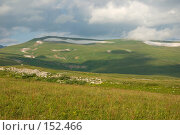 Купить «Альпийские луга. Плато Лаго-Наки. Кавказский заповедник», фото № 152466, снято 10 августа 2007 г. (c) Петухов Геннадий / Фотобанк Лори