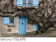 Купить «Стена дома в Париже увитого плющом», фото № 152870, снято 27 февраля 2006 г. (c) Harry / Фотобанк Лори
