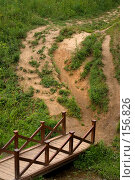 Купить «Мостик. Тропаревский лесопарк», фото № 156826, снято 8 июля 2007 г. (c) Петухов Геннадий / Фотобанк Лори