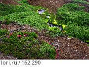 Купить «Камчатка. Речка на плато Мутновское.», фото № 162290, снято 27 июня 2007 г. (c) Николай Коржов / Фотобанк Лори