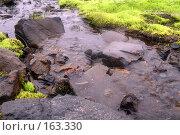 Купить «Камчатка. Речка на плато Мутновское.», фото № 163330, снято 27 июня 2007 г. (c) Николай Коржов / Фотобанк Лори
