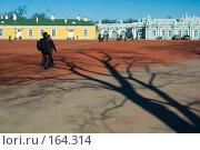 Купить «Екатерининский парк в Царском Селе», эксклюзивное фото № 164314, снято 25 марта 2007 г. (c) Александр Алексеев / Фотобанк Лори