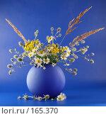 Купить «Ваза с полевыми цветами на синем фоне», фото № 165370, снято 18 июля 2007 г. (c) Елена Блохина / Фотобанк Лори