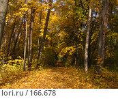Купить «Осень», фото № 166678, снято 8 октября 2006 г. (c) Карелин Д.А. / Фотобанк Лори