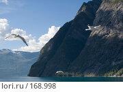 Купить «Норвегия. Фьорд», эксклюзивное фото № 168998, снято 2 августа 2006 г. (c) Александр Алексеев / Фотобанк Лори