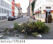 Пепелище из новогодних ёлок посреди города Копенгаген (2008 год). Редакционное фото, фотограф Георгий Ильин / Фотобанк Лори
