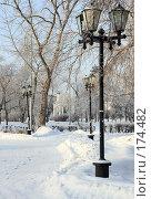 Купить «Парковая аллея», фото № 174482, снято 12 января 2008 г. (c) Круглов Олег / Фотобанк Лори