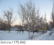 Купить «Закат», фото № 175842, снято 10 января 2008 г. (c) Cавельева Елена / Фотобанк Лори