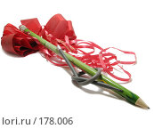 Купить «Неравный брак», фото № 178006, снято 12 января 2008 г. (c) Иван / Фотобанк Лори
