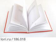 Купить «Книга», фото № 186018, снято 23 января 2008 г. (c) Лифанцева Елена / Фотобанк Лори