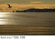 Купить «Ворота в океан. Авачинская бухта. Камчатка», фото № 186198, снято 28 декабря 2005 г. (c) Ирина Игумнова / Фотобанк Лори