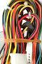 Разноцветные компьютерные провода и коннекторы в связке, фото № 188182, снято 16 мая 2007 г. (c) Александр Паррус / Фотобанк Лори