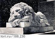Купить «Крым. Алупка. Спящий лев перед дворцом», фото № 188230, снято 22 марта 2019 г. (c) Виктор Тараканов / Фотобанк Лори