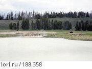 Купить «Пейзаж с бизоном,гейзером и медведем.Yellowstone.», фото № 188358, снято 17 мая 2007 г. (c) Игорь Сидоренко / Фотобанк Лори