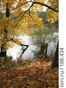 Купить «Осень в Подмосковье», фото № 188434, снято 3 октября 2007 г. (c) Игорь Сидоренко / Фотобанк Лори