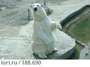 Купить «Ну что снял?», фото № 188690, снято 13 мая 2007 г. (c) Николай Богоявленский / Фотобанк Лори