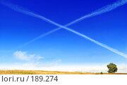 Купить «X- пространство», фото № 189274, снято 2 сентября 2007 г. (c) Анатолий Теребенин / Фотобанк Лори