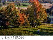 Купить «Осенний солнечный пейзаж», фото № 189586, снято 22 апреля 2018 г. (c) Aleksander Kaasik / Фотобанк Лори