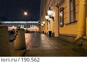Купить «Михайловский театр оперы и балета», эксклюзивное фото № 190562, снято 12 января 2008 г. (c) Александр Щепин / Фотобанк Лори