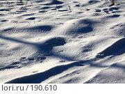 Купить «Следы на снегу», фото № 190610, снято 4 января 2008 г. (c) Бушева Анастасия / Фотобанк Лори