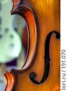Купить «Скрипка», фото № 191070, снято 30 января 2008 г. (c) Андрей Соколов / Фотобанк Лори
