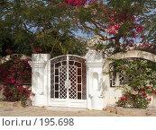 Купить «Ворота под буйной растительностью», фото № 195698, снято 19 января 2008 г. (c) Яков Филимонов / Фотобанк Лори