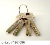 Купить «Ключи», фото № 197086, снято 3 февраля 2008 г. (c) Александр Бербасов / Фотобанк Лори