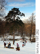Купить «Зимой на горке в солнечный день», фото № 197282, снято 2 февраля 2008 г. (c) Елена Прокопова / Фотобанк Лори